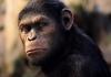 Просто шикарный слот. Обзор нового игрового автомата Planet of the Apes от NetEnt